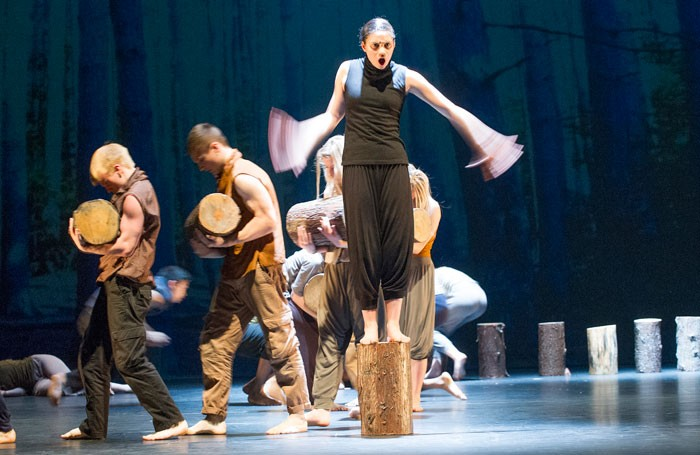 The new body will provide a single 'go-to' industry body for dance