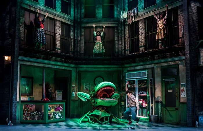 Scene from Little Shop of Horrors at Salisbury Playhouse. Photo: Richard Davenport