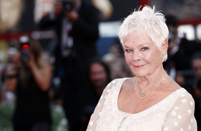 Judi Dench. Photo: Andrea Raffin/Shutterstock