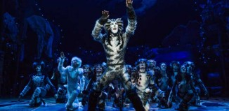Andy Huntington Jones in Cats on Broadway. Photo: Matthew Murphy
