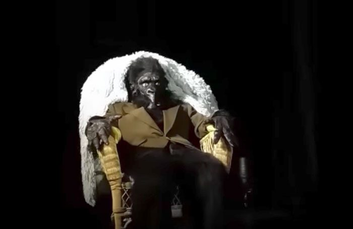 A Young Man Dressed as a Gorilla Dressed as an Old Man Sits Rocking in a Rocking Chair for 56 Minutes and Then Leave