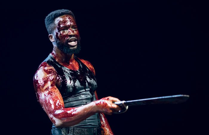 Sope Dirisu in the Royal Shakespeare Company's Coriolanus. Photo: Helen Maybanks