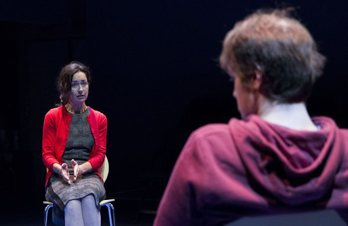 Susannah Doyle and Christopher Laishley in The Secondary Victim at Park Theatre, London. Photo: Matthew House