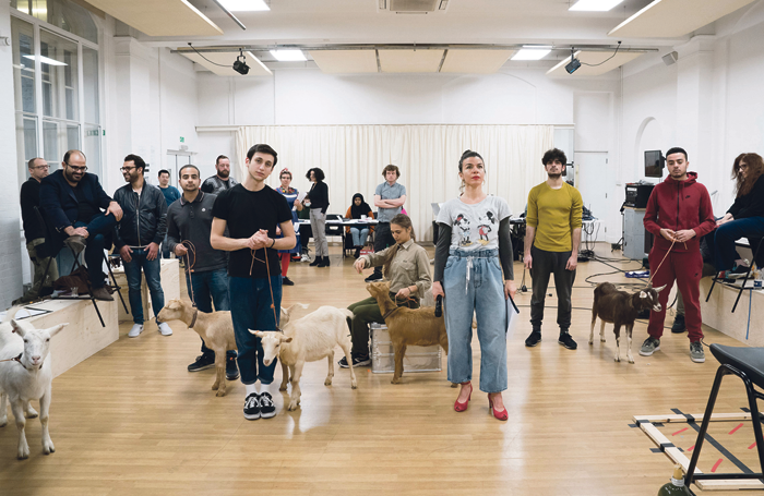 Actors and livestock in rehearsals for the Royal Court production of Goats. Photo: Johan Persson
