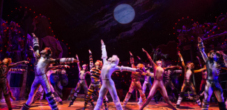 A scene from Cats on Broadway. Photo: Matthew Murphy