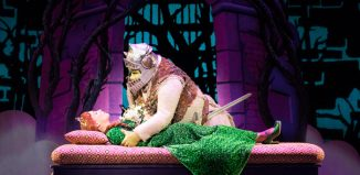 Scene from Shrek the Musical at Edinburgh Playhouse