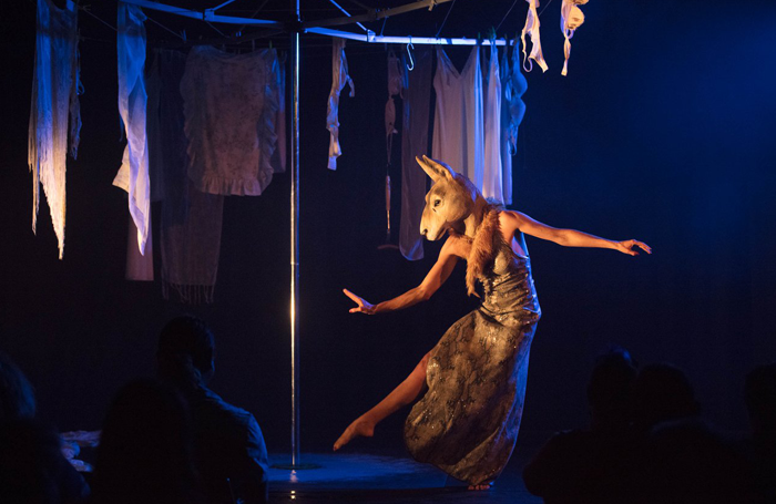 Leah Shelton's Terror Australis, one of the shows at APAM, Brisbane Powerhouse. Photo: Rob Maccoll