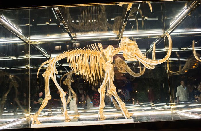 Damien Hirst's Gone but Not Forgotten, which features the gilded skeleton of a woolly mammoth, was bought by Leonard Blavatnik for $15 million. Photo: Michael Gordon / Shutterstock.com