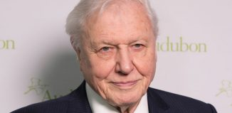 David Attenborough. Photo: Lev Radin/Shutterstock