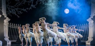 The cast of Matthew Bourne's Swan Lake at Sadler's Wells, London. Photo: Johan Persson